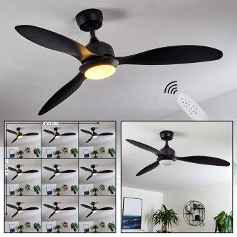 Chiapeto ceiling fan LED black, 1-light source, Remote control