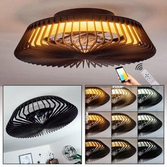 Rivarotta ceiling fan LED white, 1-light source, Remote control
