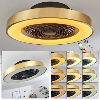 Penon ceiling fan LED black, 1-light source, Remote control
