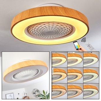 Penon ceiling fan LED white, 1-light source, Remote control