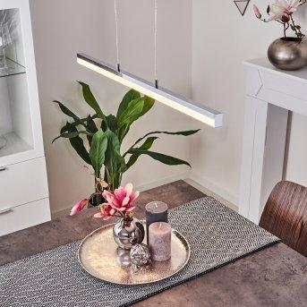 Dawson Pendant Light LED chrome, 1-light source