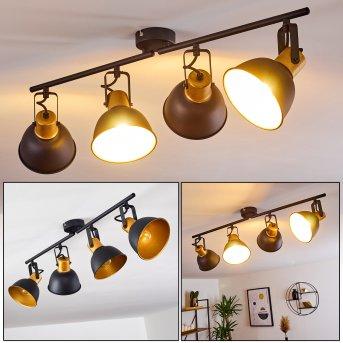 Ceiling Light Blackburn black-gold, 4-light sources