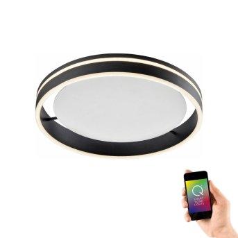 Ceiling Light Paul Neuhaus Q-VITO LED anthracite, 1-light source, Remote control