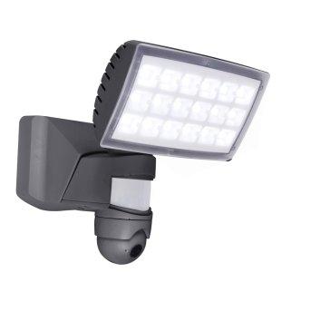 Lutec PERI CAM Outdoor Wall Light LED anthracite, 1-light source, Motion sensor