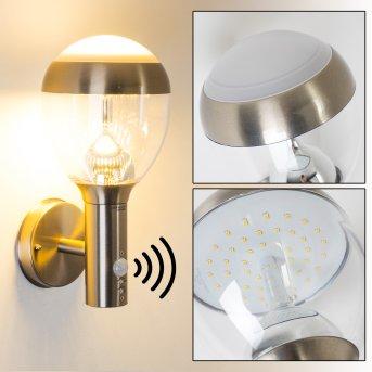CORDOVA Outdoor Wall Light LED stainless steel, 1-light source, Motion sensor