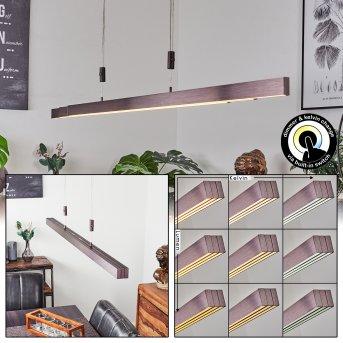 Airolo Pendant Light LED brown, 3-light sources