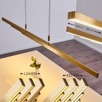 Airolo Pendant Light LED gold, 3-light sources