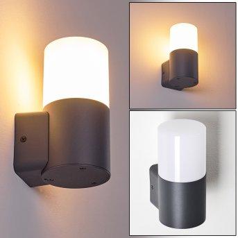 Outdoor Wall Light Schafhaus anthracite, 1-light source