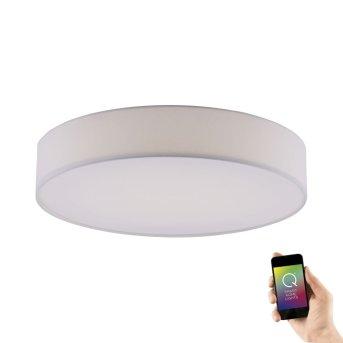 Paul Neuhaus Q-KIARA Ceiling light LED white, 1-light source, Remote control