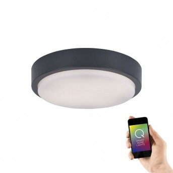 Paul Neuhaus Q-LENNY Ceiling Light LED anthracite, 1-light source, Remote control, Colour changer