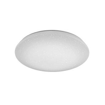 Ceiling Light Trio Leuchten WiZ NALIDA LED white, 1-light source, Remote control, Colour changer