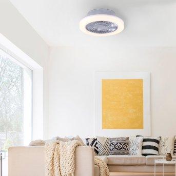 Leuchten-Direkt LEONARD Ceiling Light LED matt nickel, 1-light source