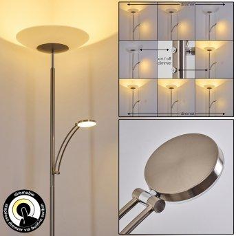 Argostoli Floor Lamp LED matt nickel, 2-light sources