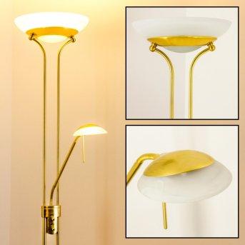 Biot uplighter LED brass, 2-light sources