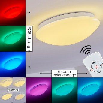 Brighton Ceiling light LED white, 1-light source, Remote control, Colour changer