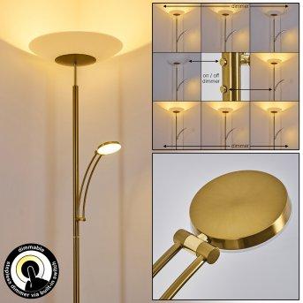 Argostoli Floor Lamp LED brass, 2-light sources