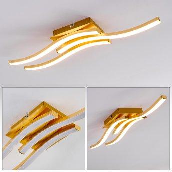 GROSSARL Ceiling Light LED gold, 1-light source