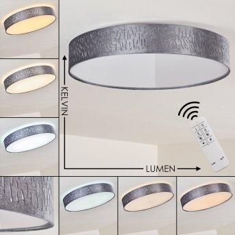 Liared Ceiling light LED matt nickel, 1-light source, Remote control, Colour changer