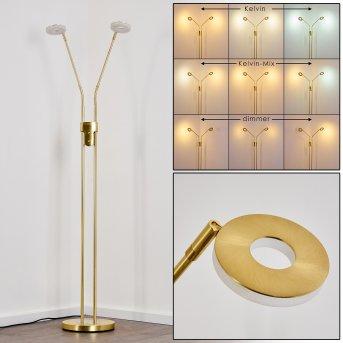 GULKANA Floor Lamp LED gold, 2-light sources