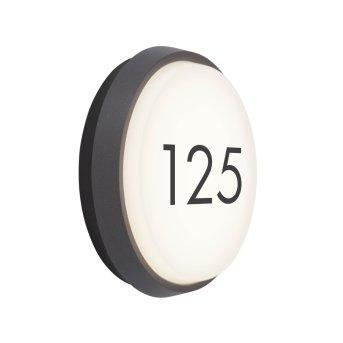 AEG Letan Round outdoor wall light LED anthracite, white, 1-light source
