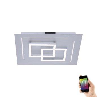Paul Neuhaus Q-LINEA Ceiling light LED aluminium, 1-light source, Remote control, Colour changer