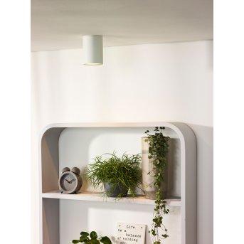 Lucide BENTOO-LED spotlight white, 1-light source