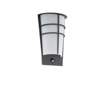 Eglo BREGANZO 1 Wall Light LED anthracite, 2-light sources, Motion sensor