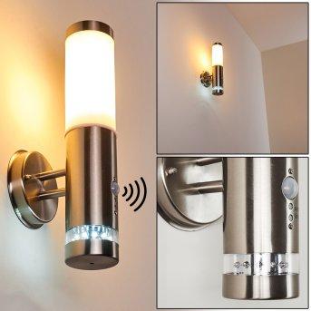 Walise Outdoor Wall Light stainless steel, 1-light source, Motion sensor