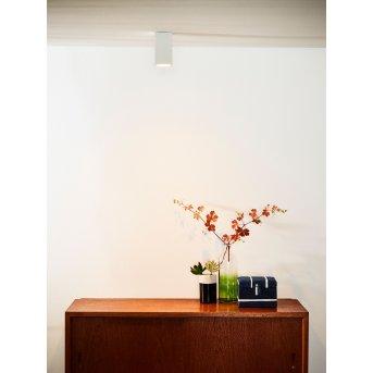 Ceiling Spotlight Lucide DELTO LED white, 1-light source