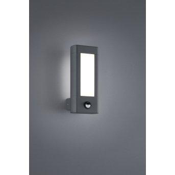 Trio RHINE Outdoor Wall Light LED anthracite, 2-light sources, Motion sensor