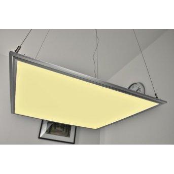 Paul hanging light LED white, 1-light source