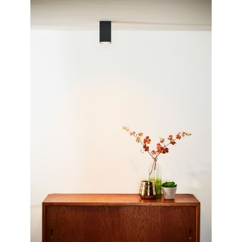Ceiling Spotlight Lucide DELTO LED grey, 1-light source