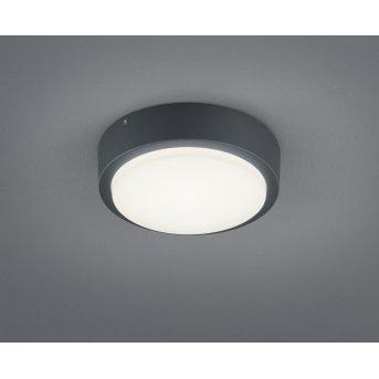 Trio BREG Wall Light LED anthracite, 1-light source