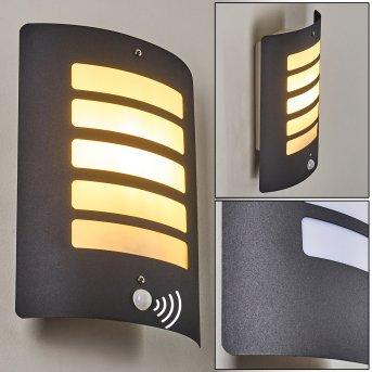 Outdoor Wall Light Alslev anthracite, 1-light source, Motion sensor