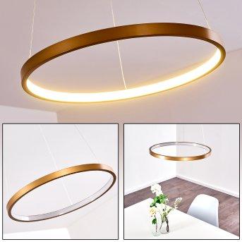 Canisteo Pendant Light LED gold, 1-light source