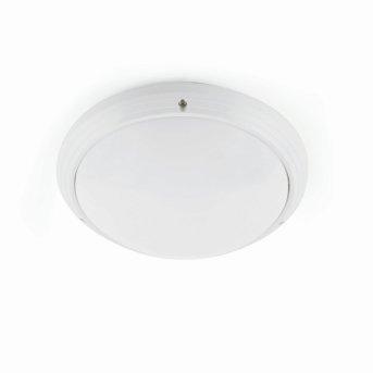 Faro Dakyu outdoor ceiling light white, 1-light source