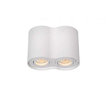 Lucide TUBE ceiling spotlight white, 2-light sources