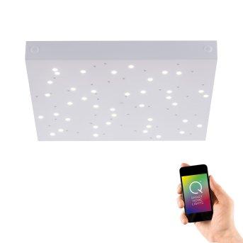 Ceiling Light Paul Neuhaus Q-UNIVERSE LED white, 1-light source, Remote control, Colour changer