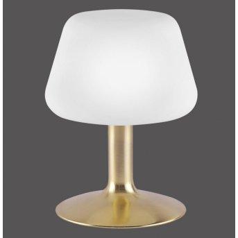 TILL table Light LED brass, 1-light source
