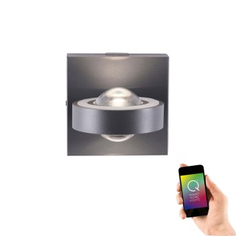 Wall Light Paul Neuhaus Q-MIA LED anthracite, 2-light sources, Remote control
