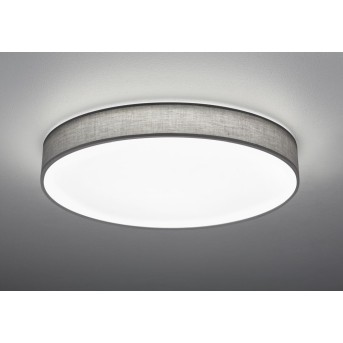 Trio LUGANO Ceiling light LED grey, 1-light source, Remote control