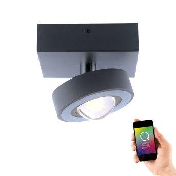 Ceiling Light Paul Neuhaus Q-MIA LED anthracite, 1-light source, Remote control