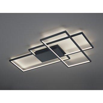 Trio THIAGO Ceiling Light LED anthracite, 1-light source, Remote control, Colour changer