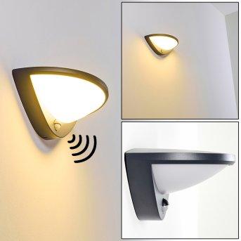 CARANO Outdoor Wall Light LED black, 1-light source, Motion sensor