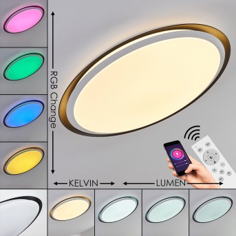 VEJLE Ceiling Light LED white, 2-light sources, Colour changer