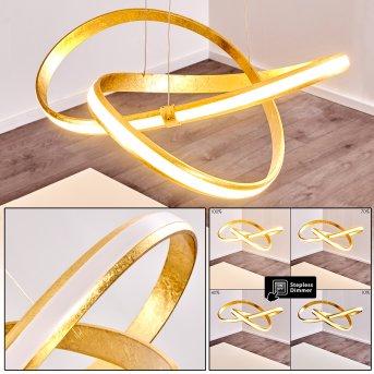 Woyens Pendant Light LED gold, 1-light source