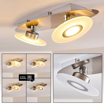 CROGHAN Ceiling light LED stainless steel, 2-light sources