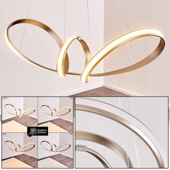 Woyens Pendant Light LED stainless steel, 1-light source