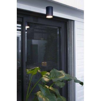 Faro Tasa outdoor ceiling light anthracite, 1-light source