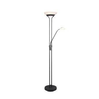 Reality ORSON Floor Lamp LED black, 2-light sources